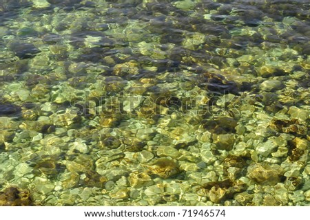pebbles in the clear sea water - stock photo
