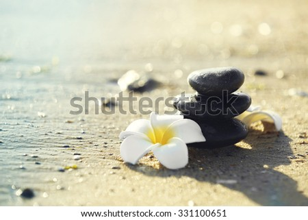 Pebbles with plumeria on seashore - stock photo