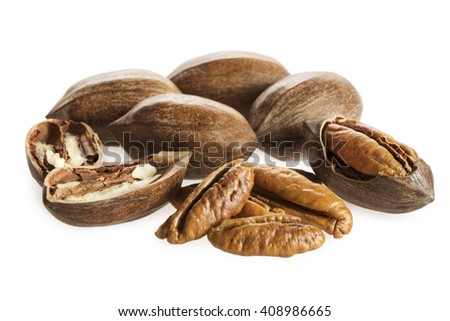 Pecan nuts isolated on white background - stock photo