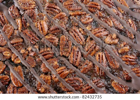 Pecan pie background, a European style dessert made with a chocolate shortbread crust - stock photo