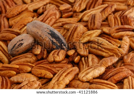 Pecans, Shelled and Un-Shelled