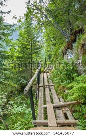 Pedestrian bridge in Carpathians mountains - stock photo