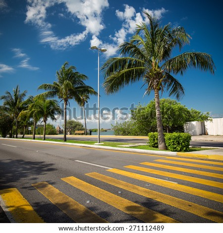 Pedestrian crossing on tropical street road  - stock photo