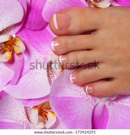 Pedicure with pink orchid flower. Beautiful female foot with french manicure. Foot care. Spa. Closeup - stock photo