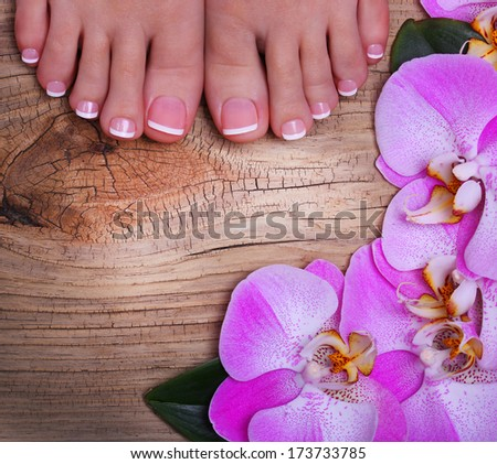 Pedicure with pink orchid flowers on wooden background. Beautiful female feet with french manicure. Foot care. Spa - stock photo