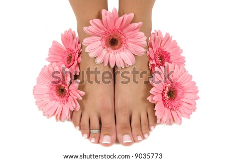 Pedicured feet and pink daisies (Easter Spa) - stock photo