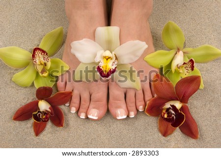 Pedicured feet with beautiful fresh orchids on beach sand - stock photo