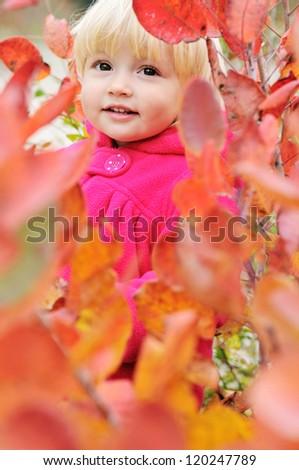 Peekaboo! I see you! - baby in bushes - stock photo