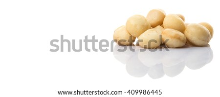 Peeled macadamia nut over white background