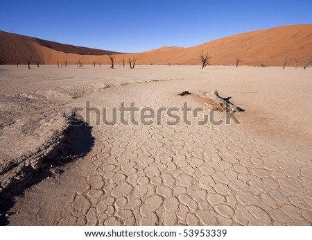 Peeling soil of where the water once were at Dead Vlei, Namibia - stock photo