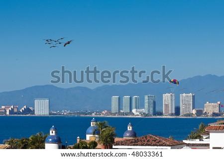 Pelicanos and parachute flying over the Banderas Bay. Puerto Vallarta, Mexico - stock photo