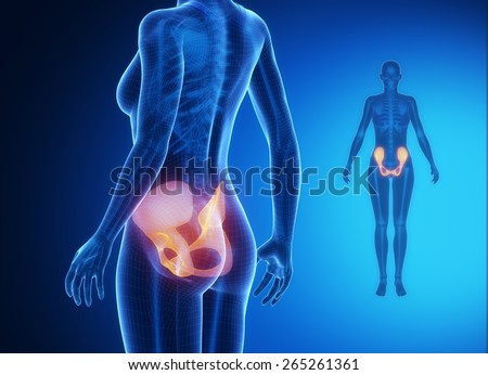 PELVIS blue x--ray bone scan - stock photo