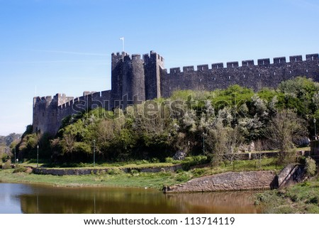 Pembroke Castle surrounded by water and trees - stock photo