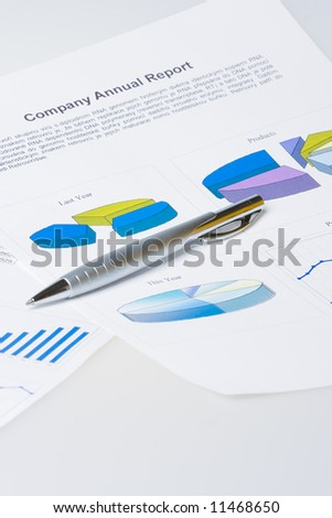 pen laying on report with diagrams - stock photo