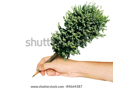 pen tree in hand isolated - stock photo