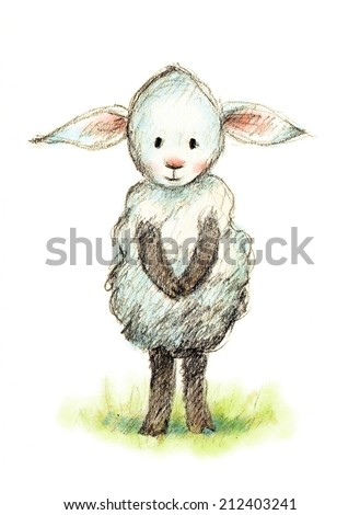 pencil and watercolor drawing of cute little sheep - stock photo