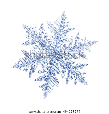 Pencil drawing: blue snowflake on white background. This sketch based on macro photo of real snow crystal: large stellar dendrite with ornate arms and fine symmetry.