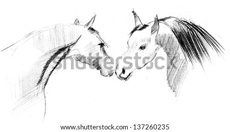 Pencil drawing of a couple of horses in love - stock photo