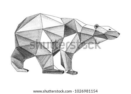 Pencil Drawing Of Bear Polygonal Style Illustration
