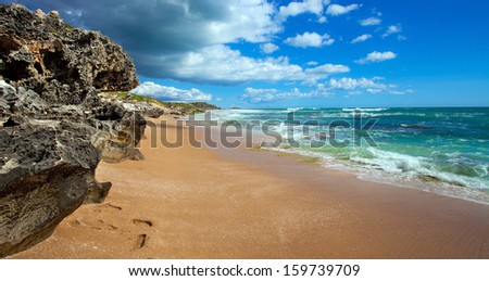 Penguin Island, near Perth, West Australia - stock photo