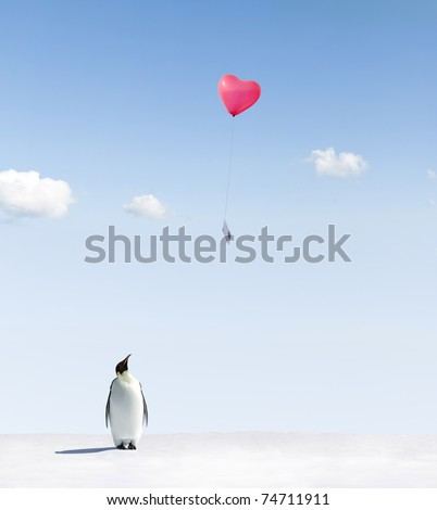 Penguin looking at a heart shaped balloon with a postcard - stock photo
