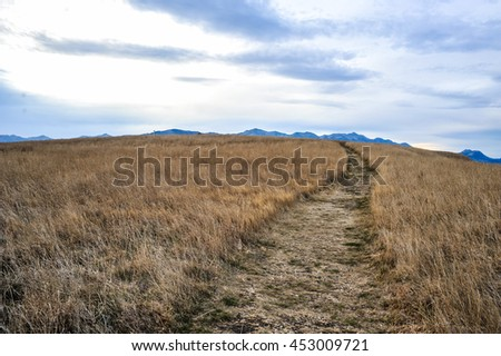 Peninsula Seal Colony and Walkway Kai Mokehu, Kaikoura, New Zealand - stock photo