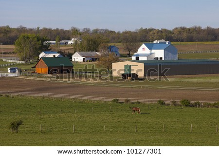 Pennsylvania farmland in spring time, an amish home is visible by treeline - stock photo