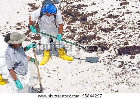 PENSACOLA BEACH - JUNE 23:  BP oil workers attempt to clean oil on June 23, 2010 in Pensacola Beach, FL. - stock photo