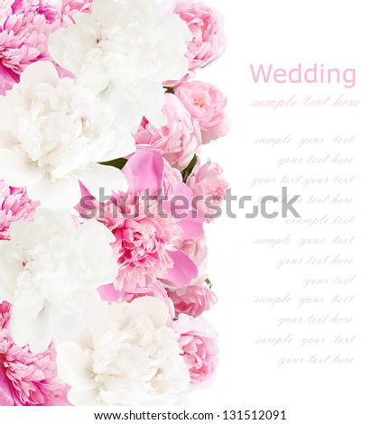 Peonies background. Peonies and roses bunch isolated on white with sample text - stock photo