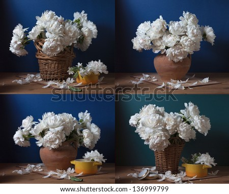 peonies, still life set of images - stock photo