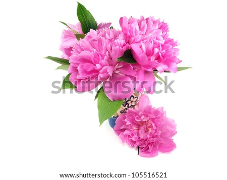 peony flower in vase on a white background
