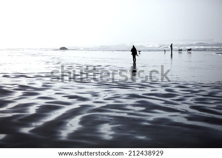 People and dogs walking along the ocean coast - stock photo