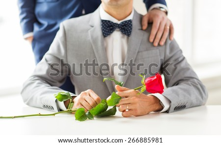 people, celebration, homosexuality, same-sex marriage and love concept - close up of male gay couple with red rose flower putting hand on shoulder - stock photo