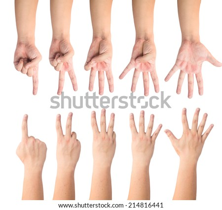 people count by finger 1 to 5 front and back