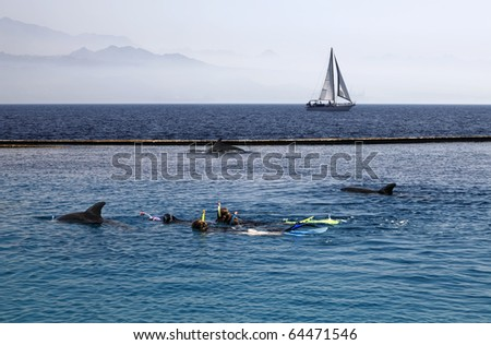 People floating in the Red sea near to dolphins on the yacht background - stock photo