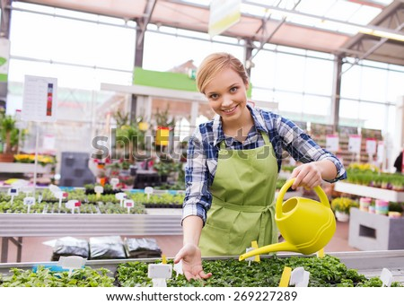 people, gardening and profession concept - happy woman or gardener with watering can and seedling in greenhouse - stock photo
