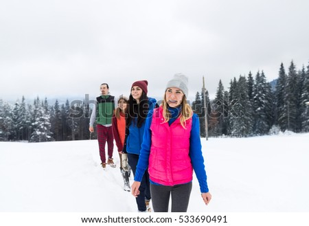 People Group Walking Winter Snow Forest Friends Vacation Mountain Resort