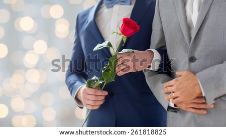 people, homosexuality, same-sex marriage and love concept - close up of happy male gay couple with red rose flower holding hands on wedding holidays lights background - stock photo