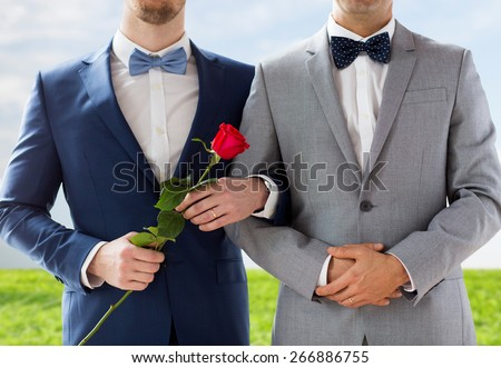 people, homosexuality, same-sex marriage and love concept - close up of happy male gay couple with red rose flower holding hands on wedding over blue sky and grass background - stock photo