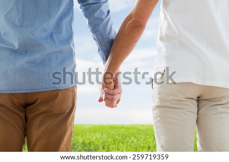 people, homosexuality, same-sex marriage, gay and love concept - close up of happy male gay couple holding hands from back over blue sky and grass background - stock photo