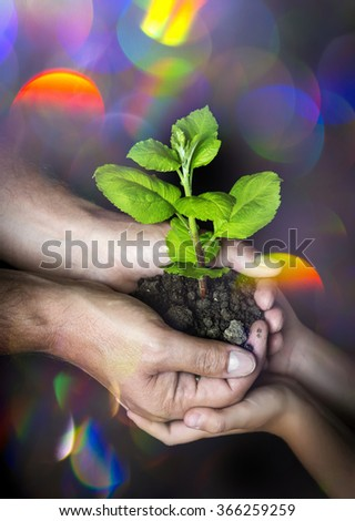 people looking after a little tree - ecology concept - stock photo