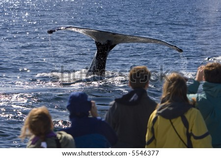 People on a Whale Watching Trip - stock photo