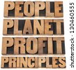 people, planet, profit, principles - sustainable business concept - isolated text in letterpress wood type printing blocks - stock photo