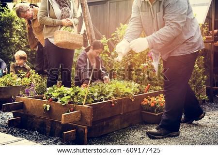 people planting harvest garden green