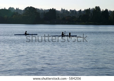 people rowing on green lake in seattle