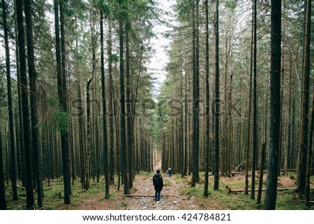 People silhouette hiker walking in the Misty mountain forest. Green pine forest landscape. Mountain trek - stock photo