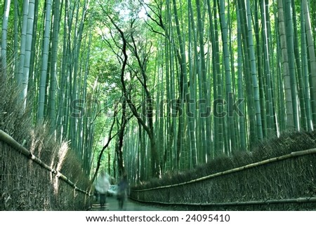 People strolling through the bamboo Forest in Arishayama, near Kyoto (intentional blurred motion) - stock photo