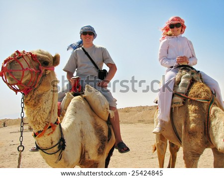people traveling on camels in egypt desert - stock photo