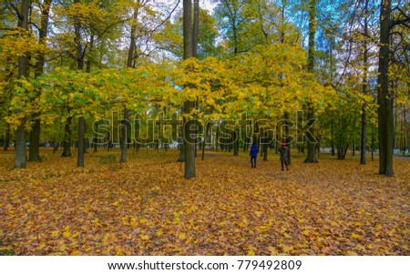 People walking at autumn forest in Saint Petersburg, Russia.
