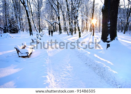 people walking in the beautiful winter park - stock photo